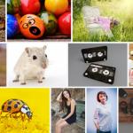 auteursrechtvrije stock photos