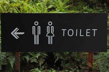 nederlandse wc