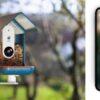 tech vogelhuisje - Birdy Buddy